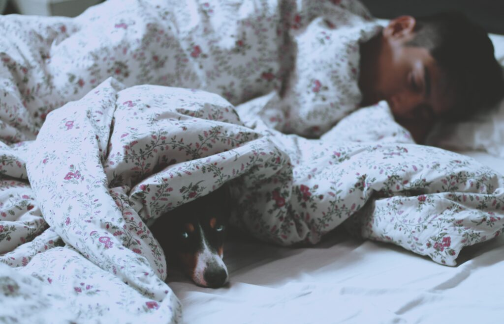man lying on bed beside short-coated black dog