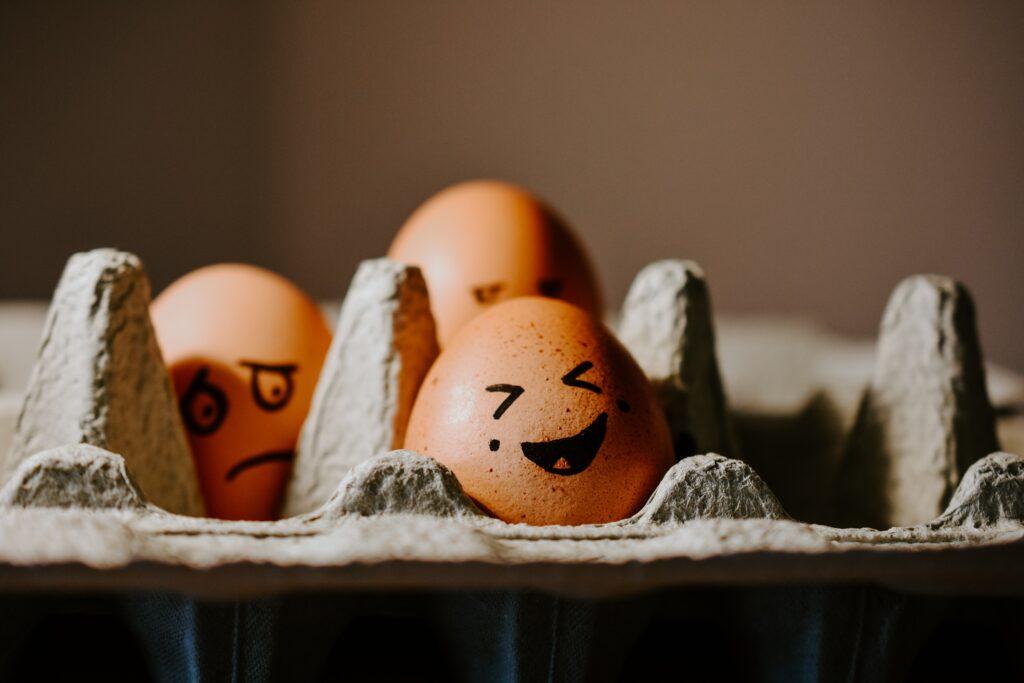 brown egg on white egg tray